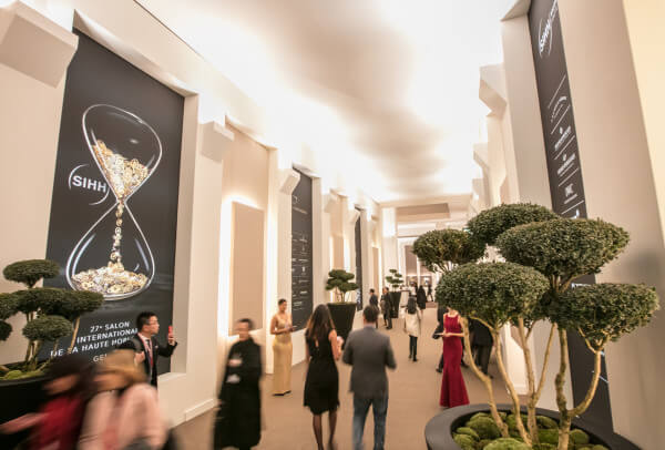 sihh2017_video-ecrin