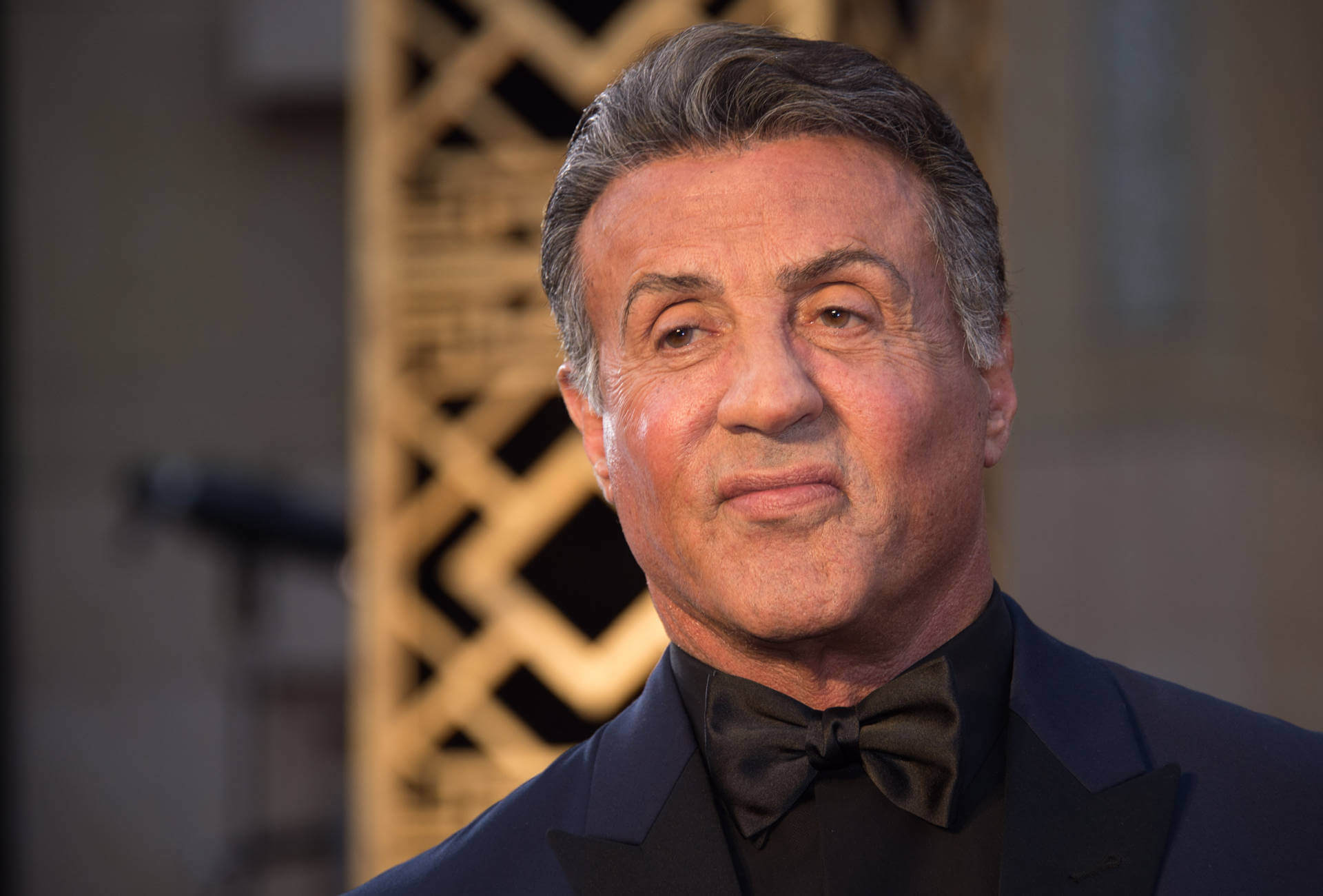 sylvester stallone his life his dreams his watches fhh journal