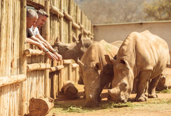 Care For Wild Rhino Sanctuary